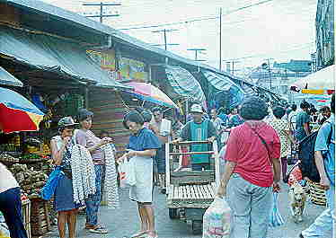 CarbonMarket 1 Sep2000